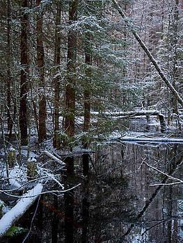 Seitseminen river by Jouko Lehto