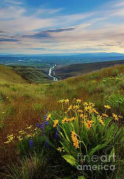 Selah Spring Sunset by Mike Dawson