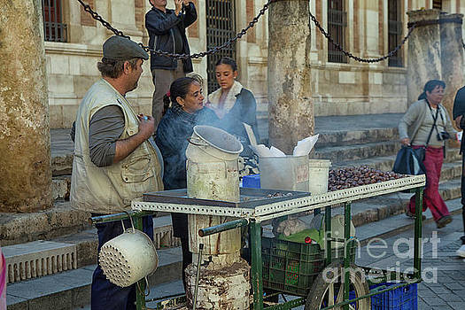Patricia Hofmeester - Selling and roasting chestnuts