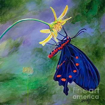 Semperi Swallowtail Butterfly by AnnaJo Vahle