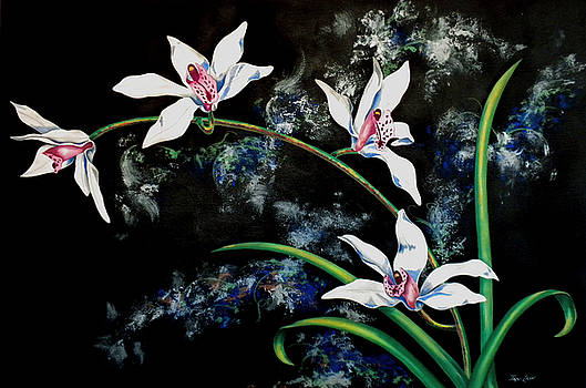 White Orchids by Jan Law
