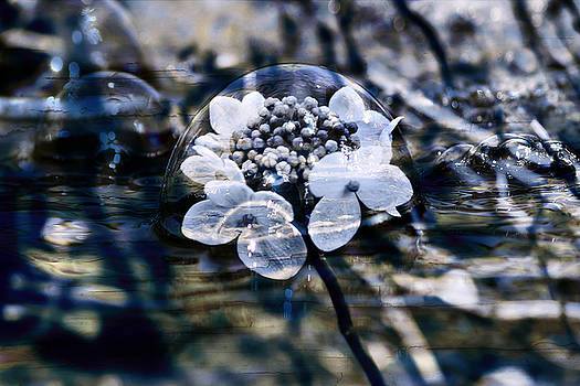 Nicole Frischlich - Send you some feeling of blue