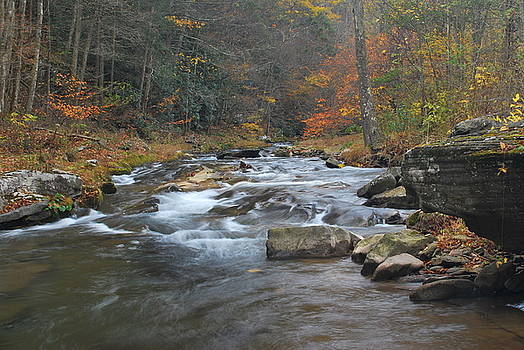 Seneca Creek Autumn by Randy Bodkins