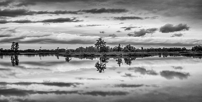 Seney by Dave Chandre