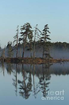 Seney Morning Reflections by Teresa McGill