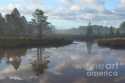 Seney Reflections by Teresa McGill