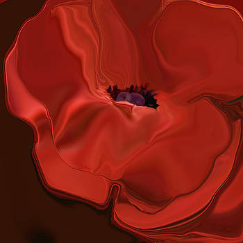 Sensuous Silk Poppy by Bamalam  Photography