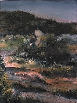 Sentinel by Michael Ryan