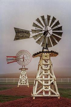Susan Rissi Tregoning - Sentinels of the Prairie