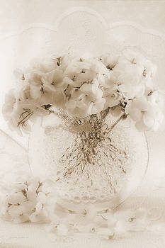 Sandra Foster - Sepia Geraniums In Bubble Vase