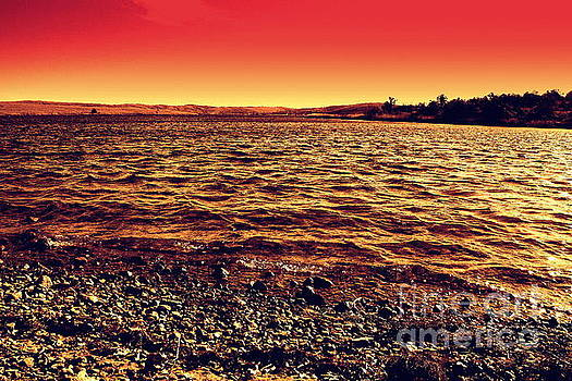 Sepia Lake by Mickey Harkins