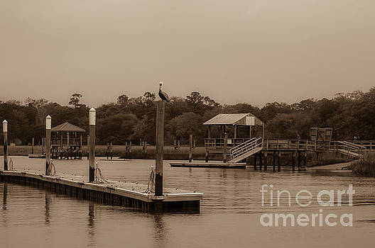 Dale Powell - Sepia of Shem Creek