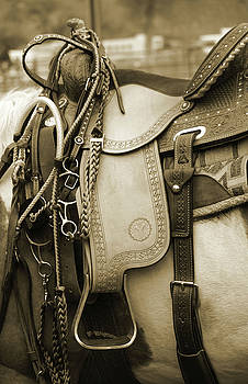 Sepia Saddle by Teresa Stevens