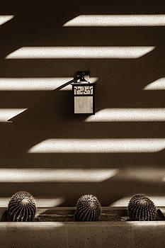 Sepia Stucco Shadows by Glenn DiPaola