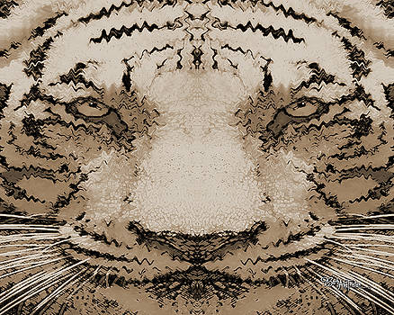 Sepia Tiger #162 by Barbara Tristan