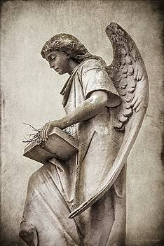 Sepia Toned Cemetery Angel by Melissa Bittinger