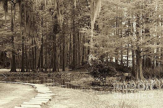 Chuck Kuhn - Sepia tones Garden Park