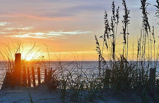 September 27th OBX Sunrise by Barbara Ann Bell