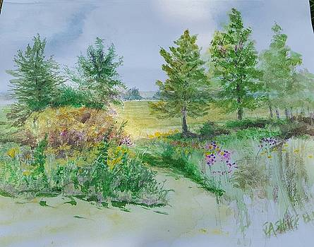 September at Kickapoo Creek Park by J Anthony Shuff