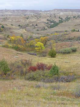 September in Western Dakota by Cris Fulton