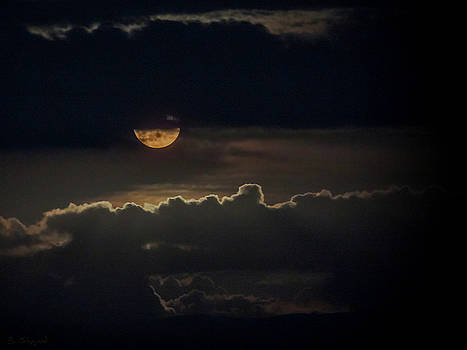 September Moon by Brian Shepard
