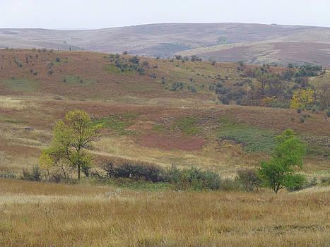 September Splendor on the Western Edge by Cris Fulton