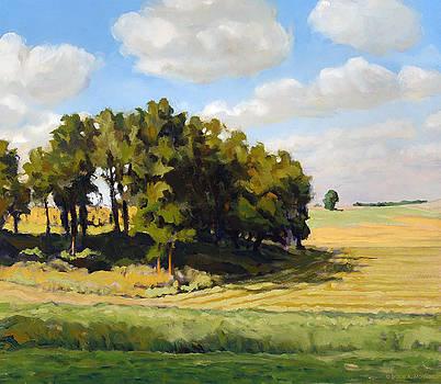 September Summer by Bruce Morrison