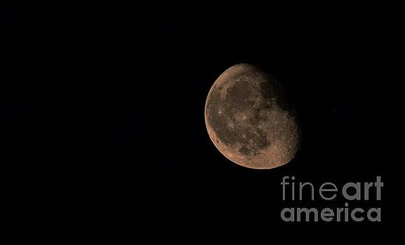 September Three Quarter Phase   Moonrise            Indiana by Rory Cubel