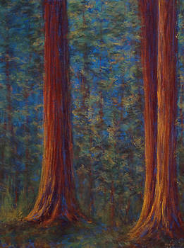 Sequoia Grove by Erica Keener