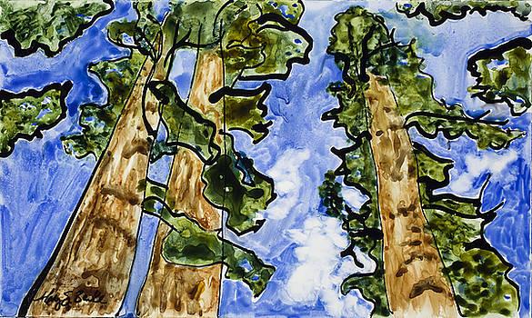 Mary Benke - Sequoias on Yupo