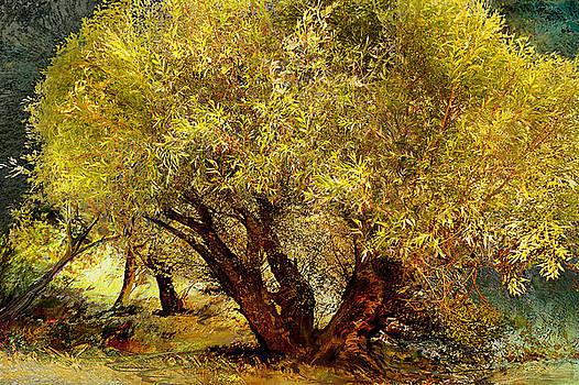 Serenade For Pastures by Anne Weirich