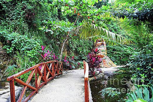 Gary Wonning - Serene Bridge