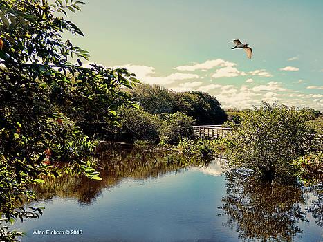 Serene Florida Vista by Allan Einhorn