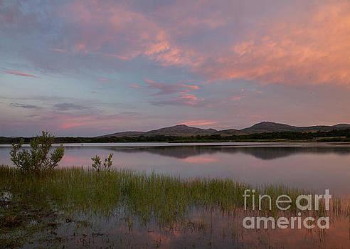 Serene Lake by Iris Greenwell