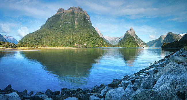 Serene Morning at Milford Sound by Daniela Constantinescu