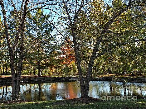 Serene Scene at the Park by Barbara Plattenburg