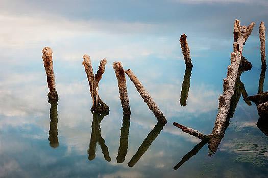Serene Salton Sea by Nazeem Sheik