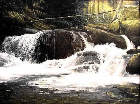 Serenity by Bob Travers