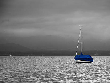 Serenity by Ron Dubin