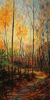 Serenity's Path by Daniel W Green
