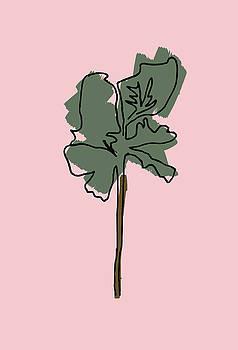 Series Pink 12 by Cortney Herron