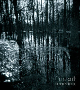 Series Wood and Water 7 by RicharD Murphy
