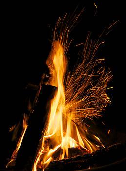 Set the Night On fire by Jane Eleanor Nicholas