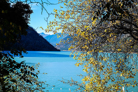 John McArthur - Seton Lake through the foiliage