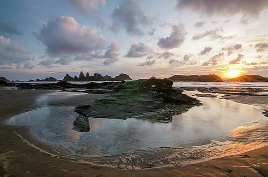 Margaret Pitcher - Setting Sun at Seal Rock