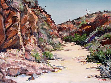 Settler Trail Anza-Borrego Desert by Robert Gerdes