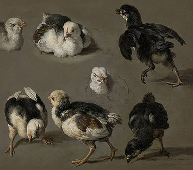 Seven Chicks by Melchior de Hondecoeter