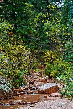 Robert Meyers-Lussier - Seven Falls Pastoral Study 8