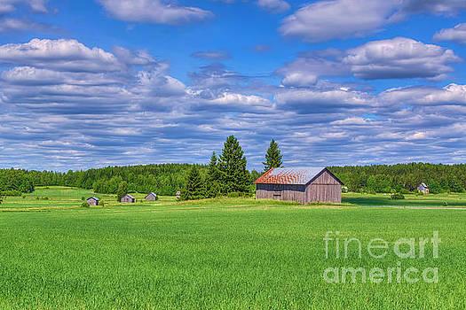Seven old barn by Veikko Suikkanen