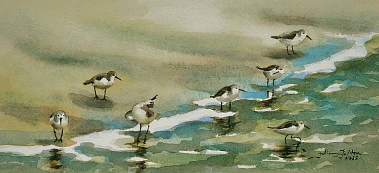 Seven Sandpipers at the Seashore  by Julianne Felton